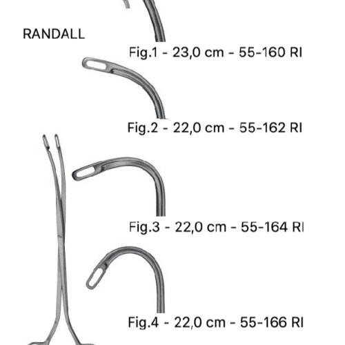 Pensa calculi renali md.Randall 23