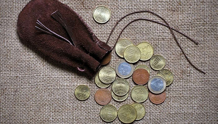 coins in pouch
