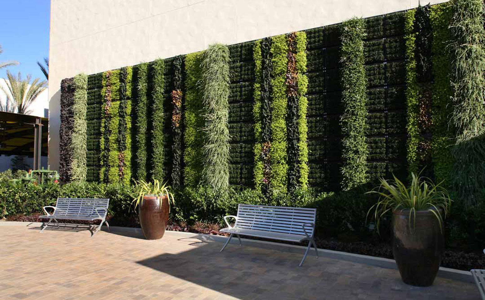 Living Walls What To Know Before Bringing The Outdoors Inside
