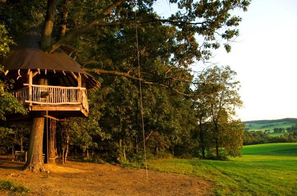 Tree House 34