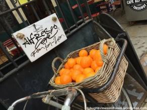 The WordPress Weekly Photo Challenge - Orange