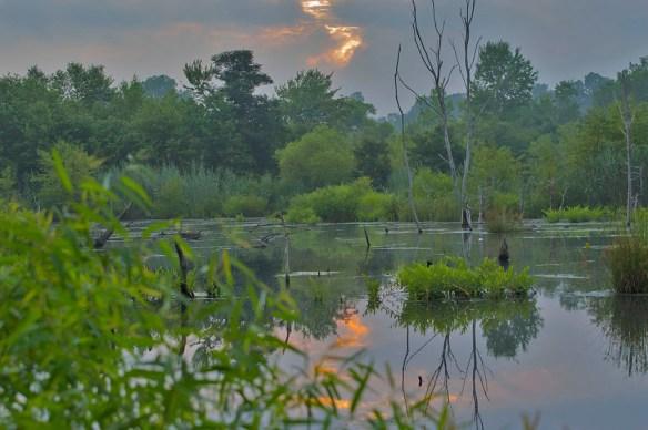 Wooton Sunrise 8