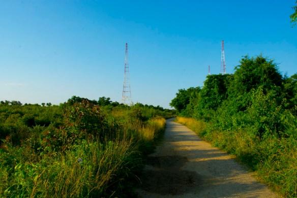 Greenbury Point 3