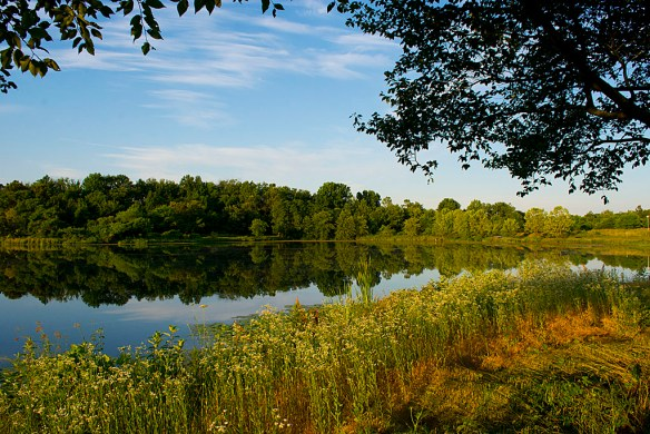Lake Artemesia 31