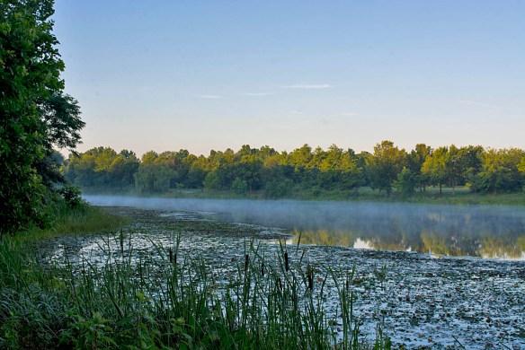 Lake Artemesia 41