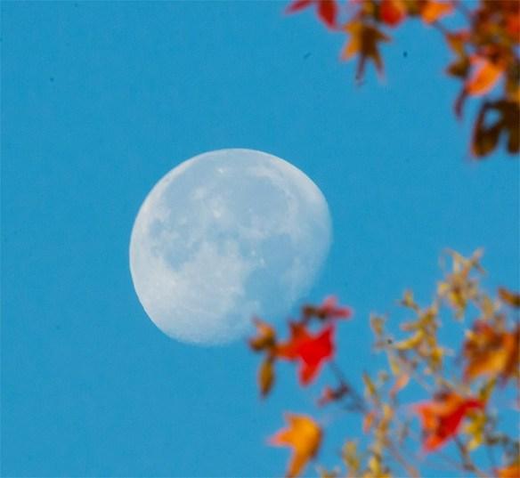 moon-2016-3
