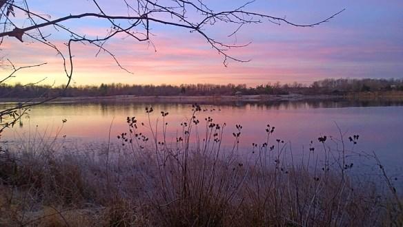 Lake Artemesia 76