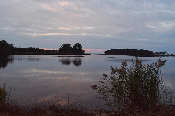Blackwater Dawn 27