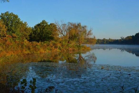 Lake Artemesia 92