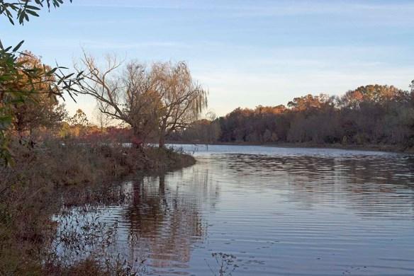 Lake Artemesia 93