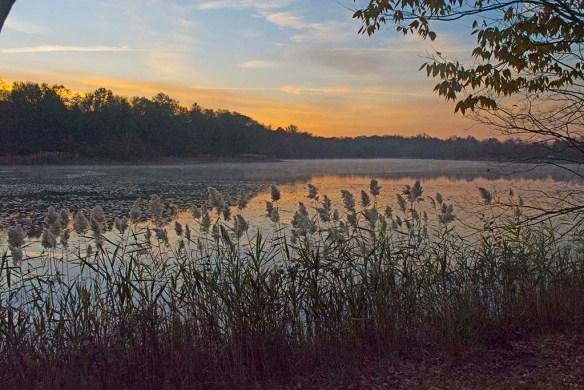 Lake Artemesia 94