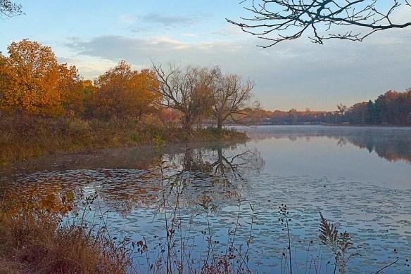 Lake Artemesia 95
