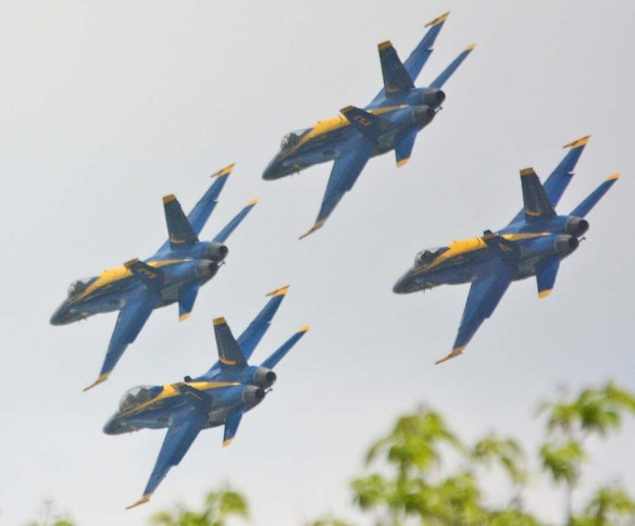 Blue Angels 50
