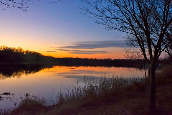 Lake Artemesia 114