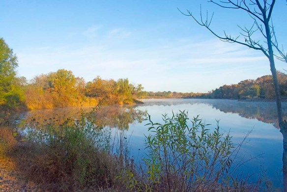 Lake Artemesia 139