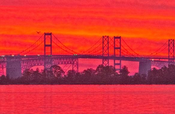 Bay Bridge 46