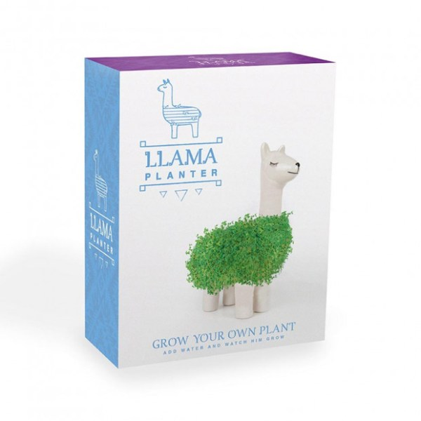 lama-a-faire-pousser-packaging