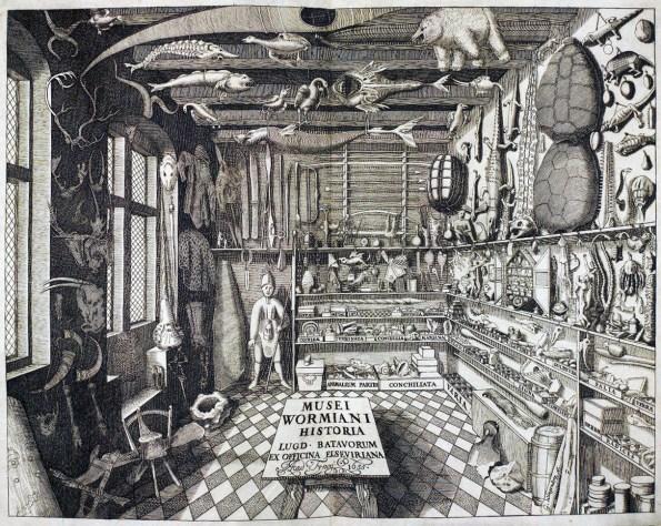 levinus-vincent-musei_wormiani_historia-1715