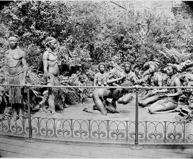 Zulumenn til sýnis í Crystal Palace 1860