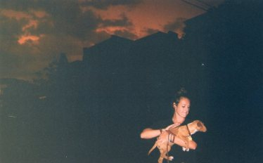 Disposable Photo Storm St. Louis