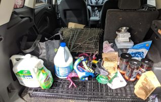 Donations delivered – Dog Days Rescue