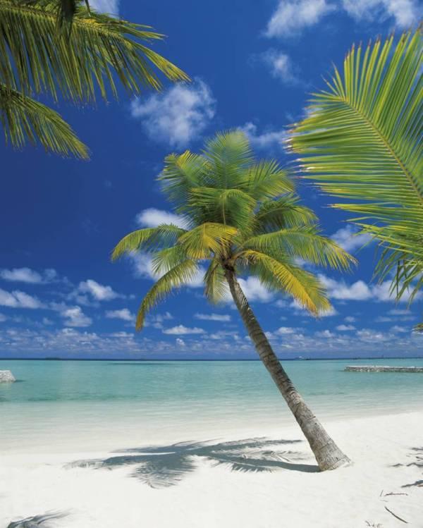 Komar Ari Atoll Fotobehang 184x254cm