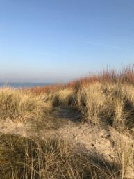 DuinenVakantiepark Texel - De Krim - Huisje huren op Texel - Strandloper