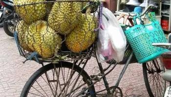 boodschappen doen op de fiets wie doet het nog