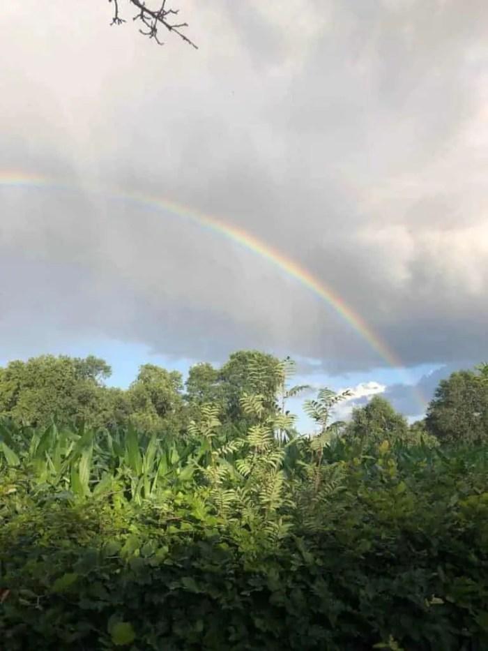 Regenboog achterhoek