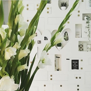 witte gladiolen vakjeskast