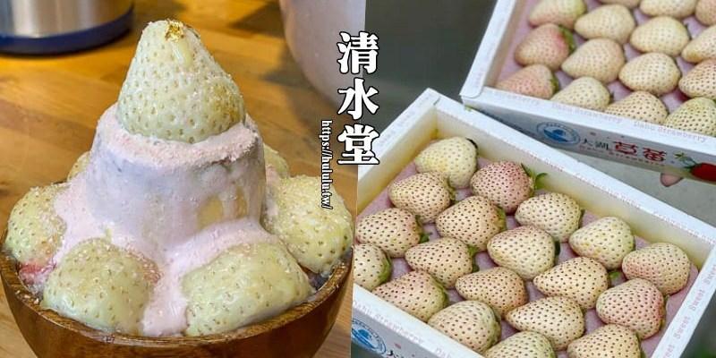 台南冰品必吃『清水堂』浪漫登場!雪兔白草莓冰!太狂了~全台灣只有這裡嚐的到超夢幻逸品!