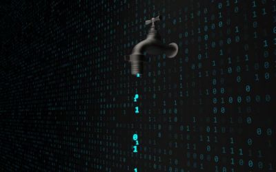 How to Protect Yourself from Data Leaks