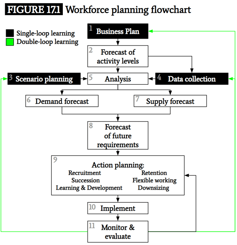 Workforce Planning Flowchart: Armstrong's Handbook of Human Resources Mgmt Practice (13th Edition); Pg 218-221