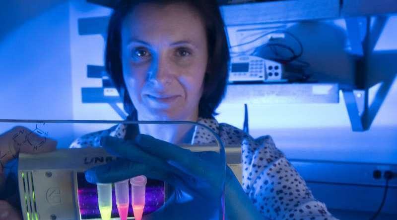 Coronavirus (COVID-19) testing kits to be developed using SFU-invented RNA imaging technology