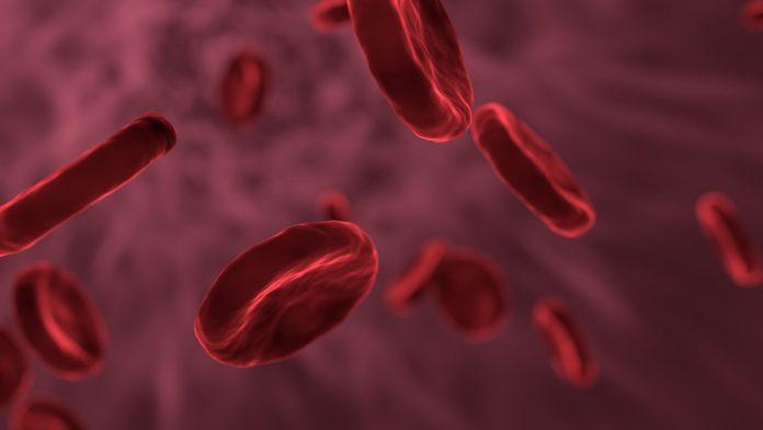 Alzheimer's affect blood