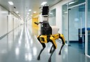 Dog-like robot measures patients' vital signs remotely