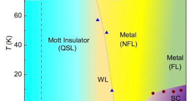 Quantum spin liquid candidate becomes a superconductor under pressure