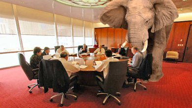 "Photo of The Real Elephant in the Room is ""Diversity"""