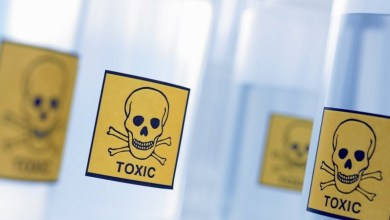 Photo of 5 Ways to Identify a Toxic Workplace – Before You Accept The Job