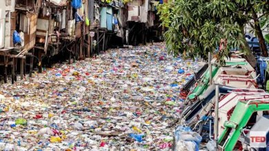 Photo of A radical plan to end plastic waste | Andrew Forrest