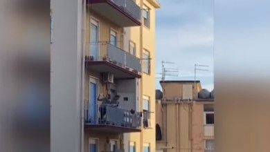 Photo of Heartwarming Moments Quarantined Italians Sing Together from Balconies