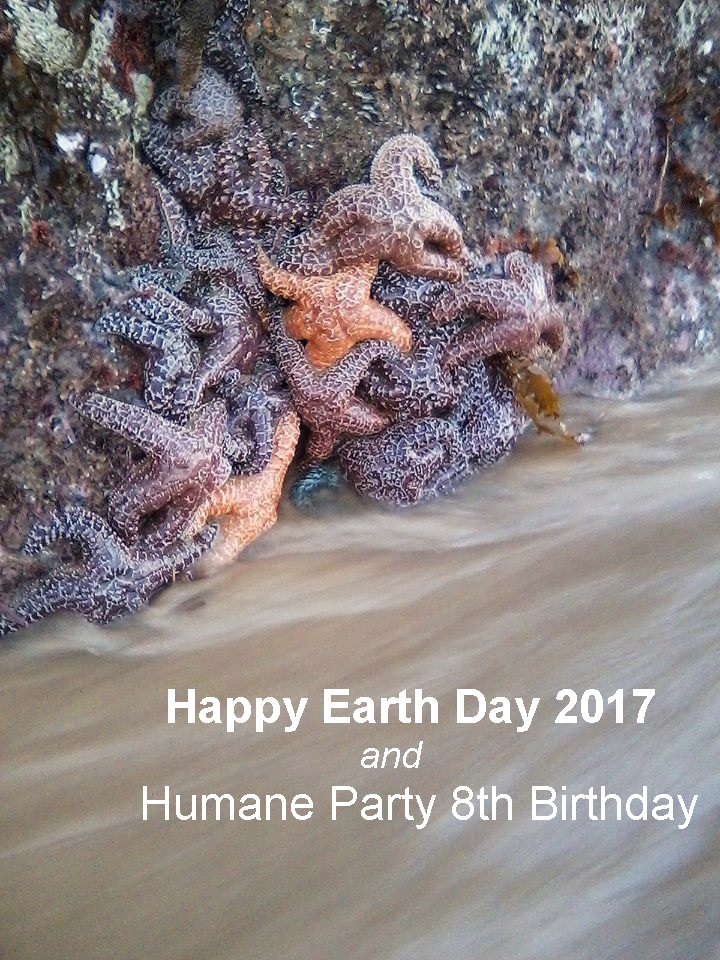 Earth Day | Birthday 2017
