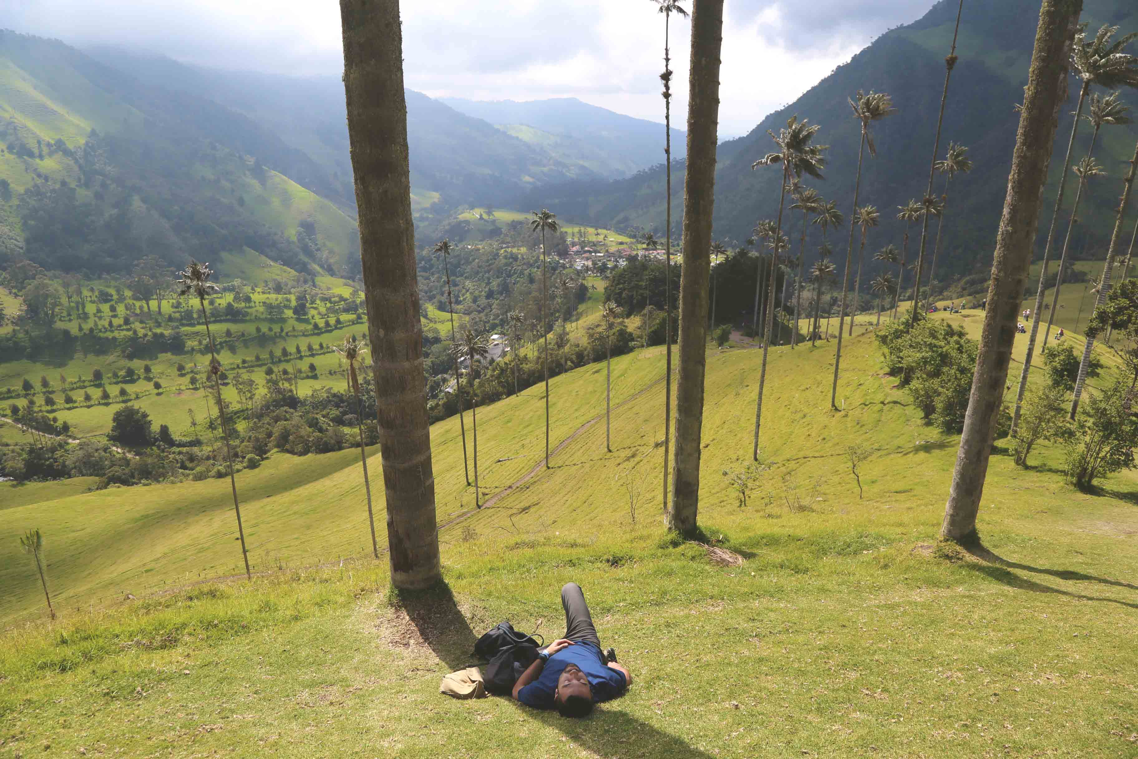 Cocora Valley for the New Year.