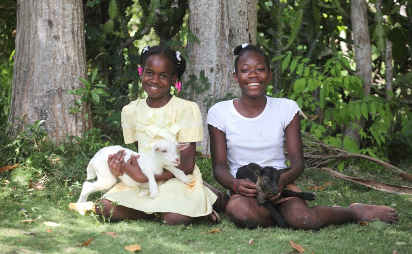 Can a goat really change a life?