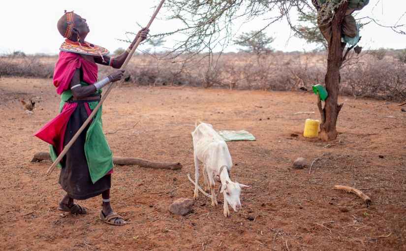 Extreme weather brings chronic crises for families in East Africa