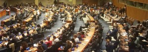 Delegates attend First Committee in New York.