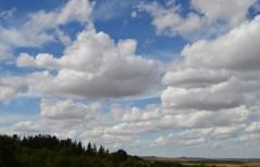 Dakota sky 2