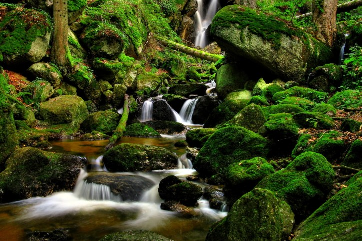 forest-river-waterfall-trees-rocks-nature-wallpaper-1