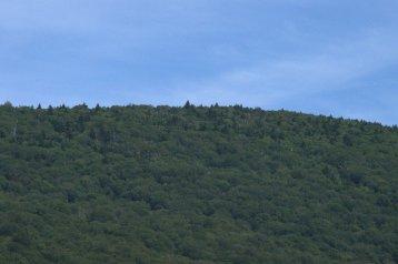Green mountain I
