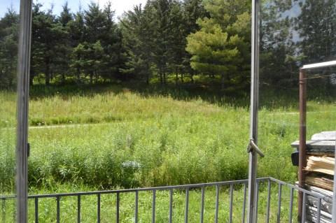 Woodshop view